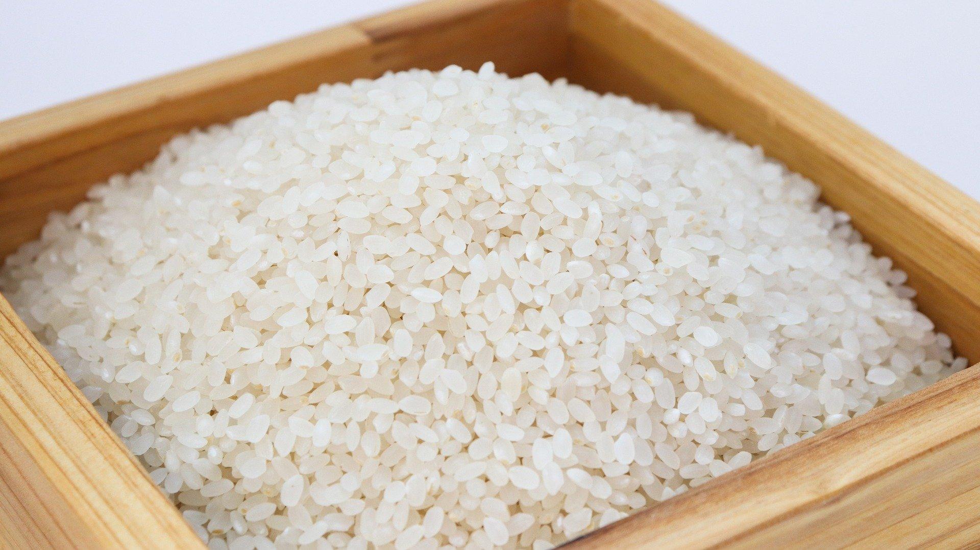 白米の栄養を知っているともっと有難い!お米のすごいパワーとは